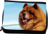 pmccchowchow